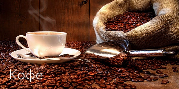 Coffee bean types arabica robusta