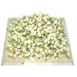 Цветы жасмина (801), 50 г